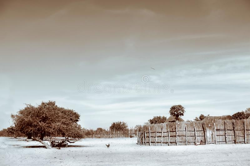Sepia Photograph of Trees and Hay royalty free stock photos