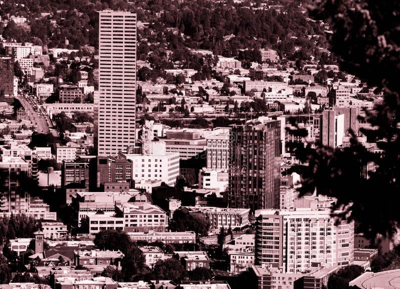 Sepia Photography of Cityscape stock photos