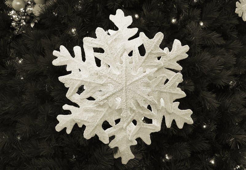 Sepia van de sneeuwvlok royalty-vrije stock afbeeldingen