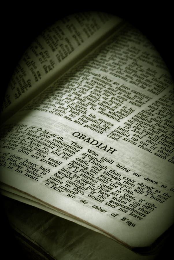Sepia van Obadiah van de Reeks van de bijbel stock foto's