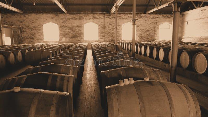 Sepiowa fotografia rocznika wina baryłki w rzędach obrazy stock