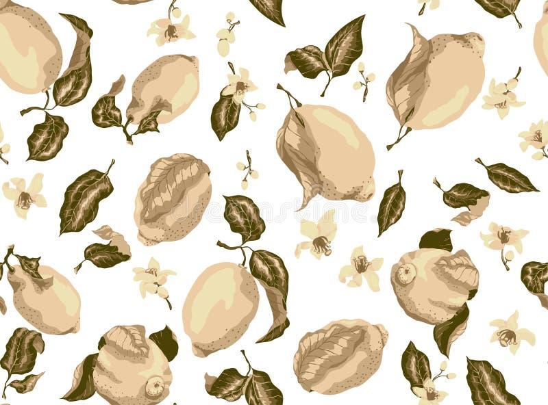Sepiowy bezszwowy wzór z cytryn owoc i cytrusa kwitnącym flo ilustracja wektor