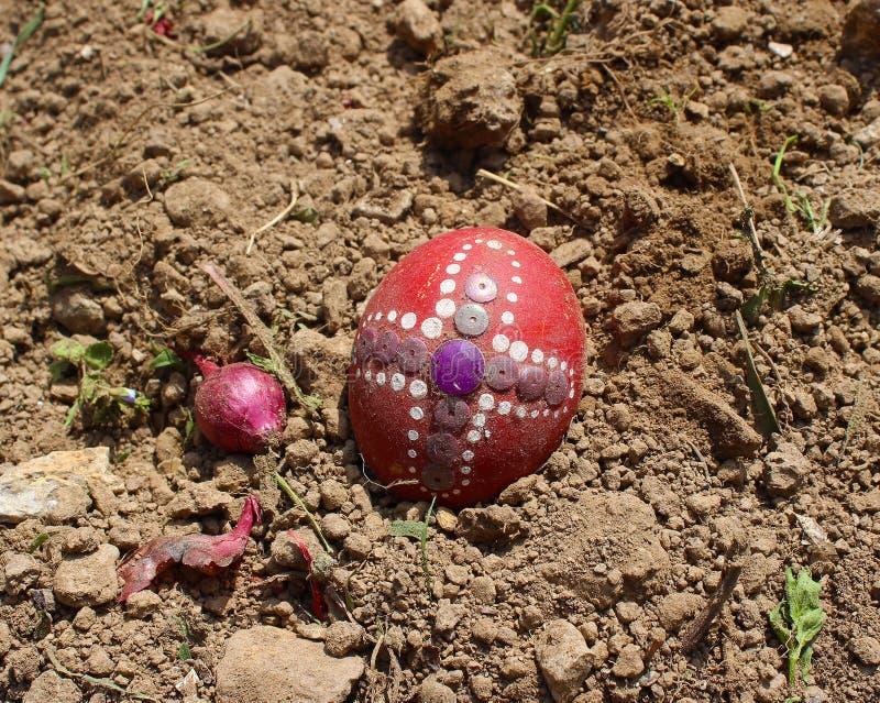 Seppellendo il vecchio uovo di Pasqua nel primo solco della terra, campo fotografia stock