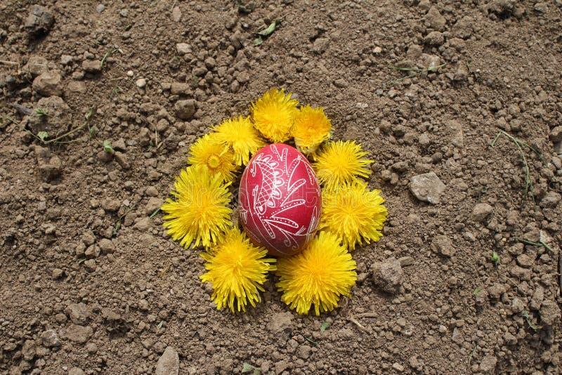 Seppellendo il vecchio uovo di Pasqua nel primo solco della terra, campo fotografia stock libera da diritti