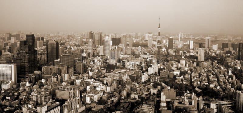 Seppia di Tokyo fotografia stock