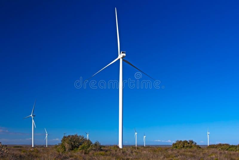Sept turbines de vent dans le domaine image stock