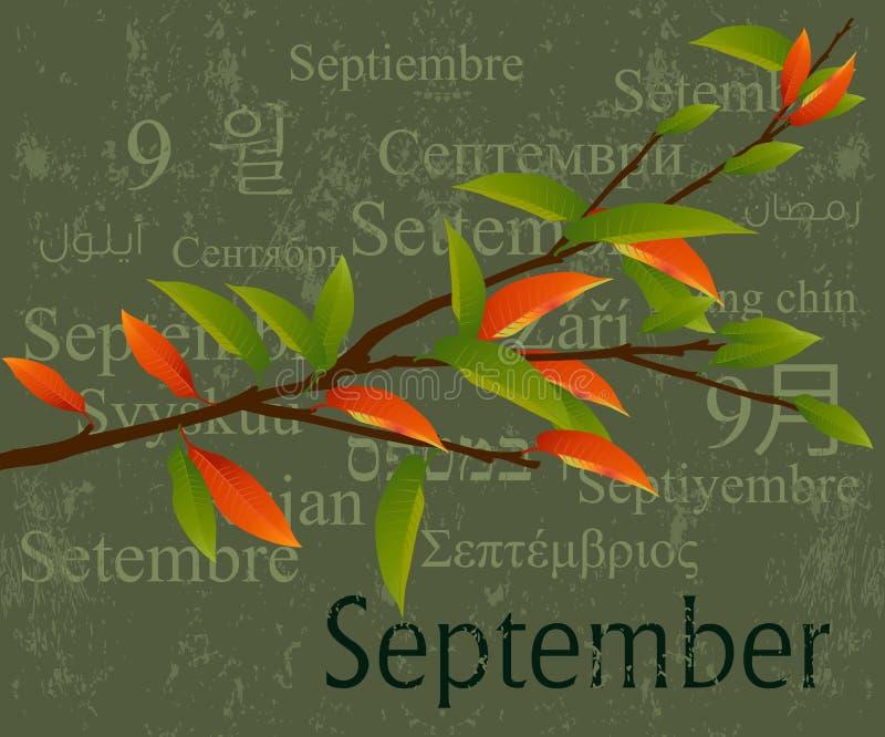 September Stock Photography