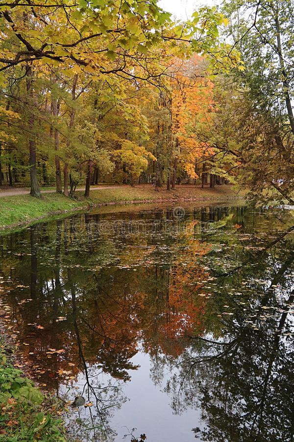 September autumn park in Russia, lake with red leaves and reflection in heavy fog. Beautiful autumn landscape in the park, seasons. A journey through royalty free stock photos