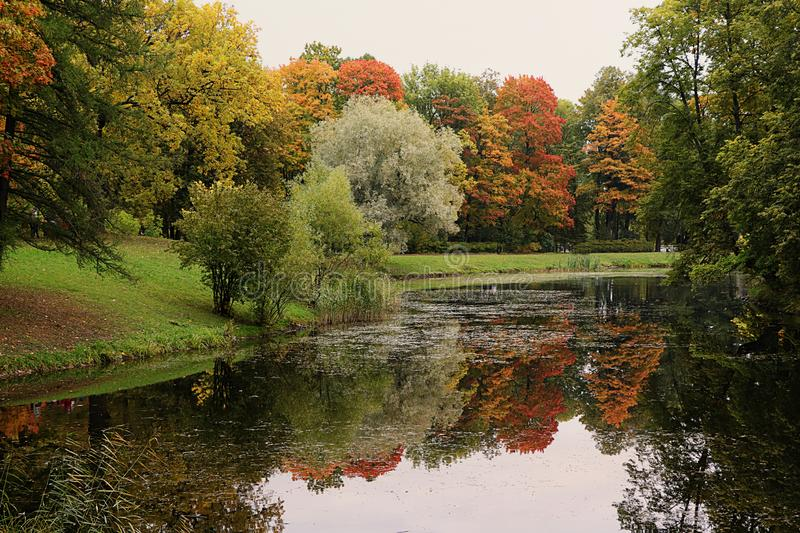 September autumn park in Russia, lake with red leaves and reflection in heavy fog. Beautiful autumn landscape in the park, seasons. A journey through stock photos