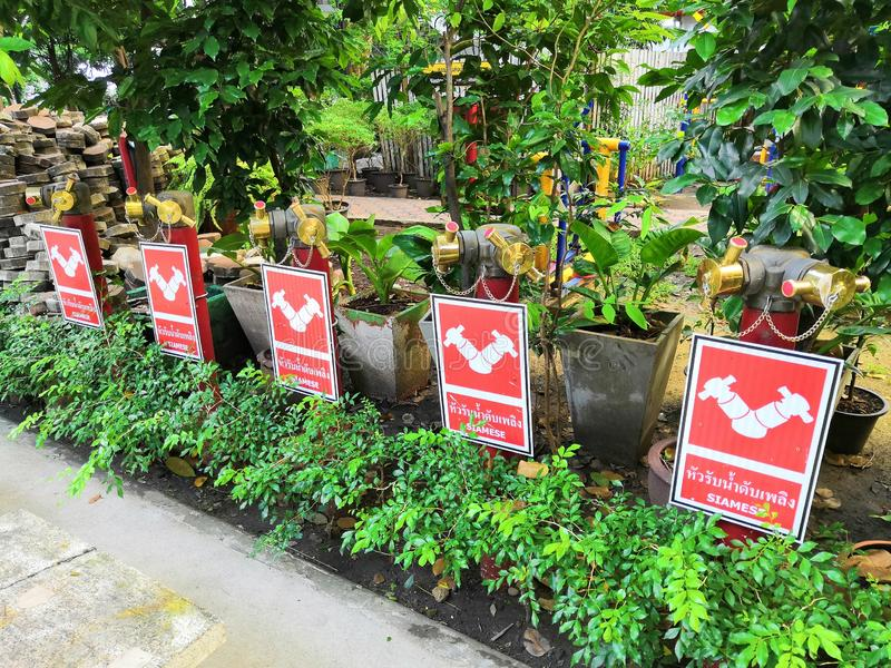 September 7,2018 bangkok thailand Feuerwehr-Verbindung im Garten stockbilder