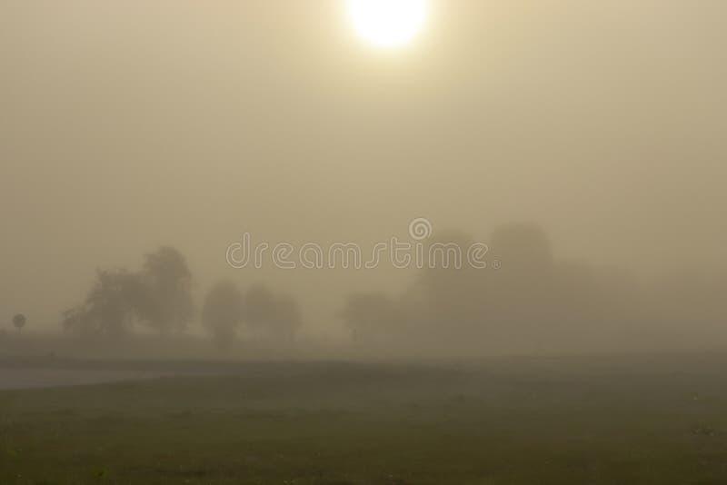 September foggy morning stock photography