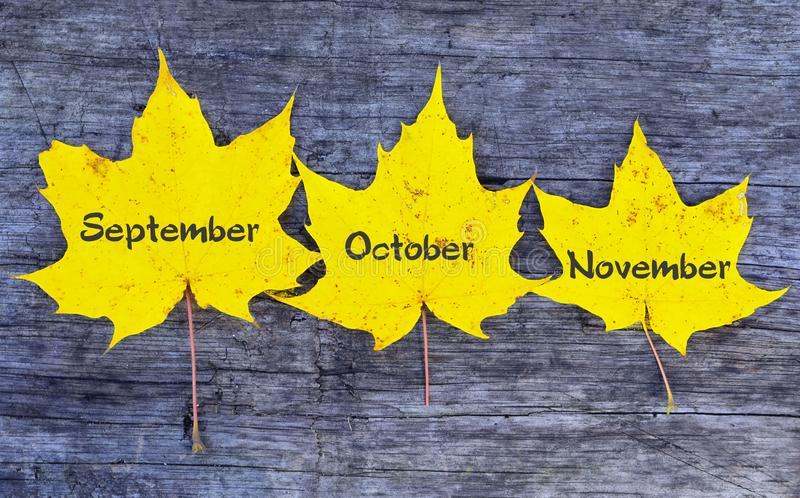 September Oktober, November Gula höstsidor med inskrifter på gammal träbakgrund Höstmånader arkivfoto