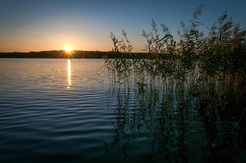 Sunset over the Swedish lake royalty free stock photo
