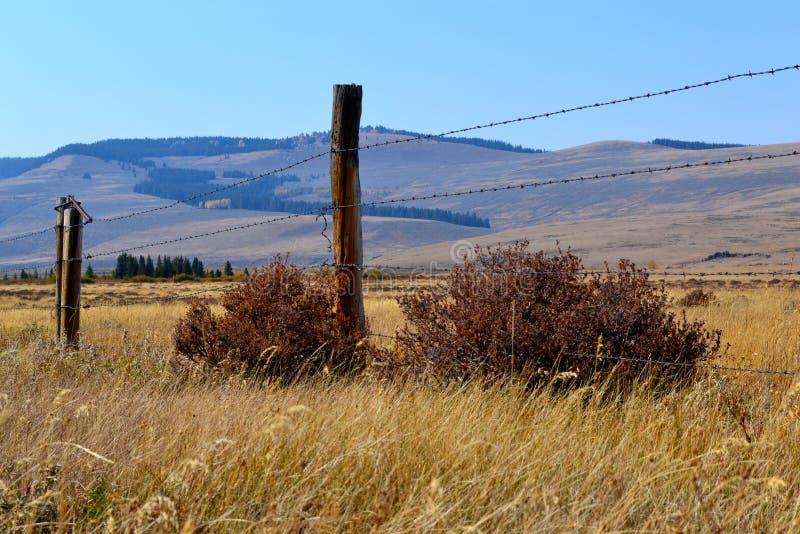 September in Wyoming royalty-vrije stock foto