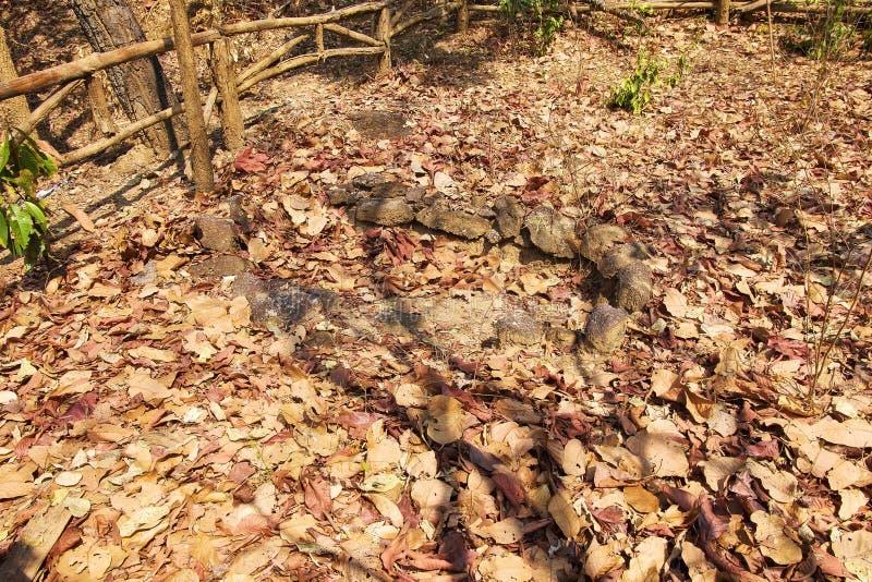 Sepultura antiga feita da pedra no parque nacional Op de Luang, quente, Chiang Mai, Tailândia foto de stock