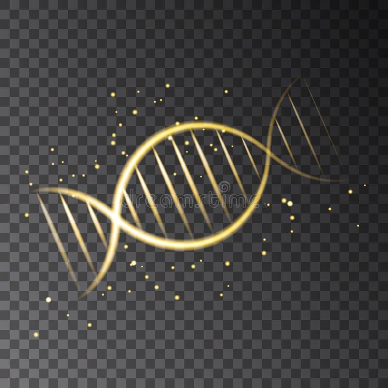 Sequência de incandescência dourada do ADN isolada no fundo transparente ilustração stock