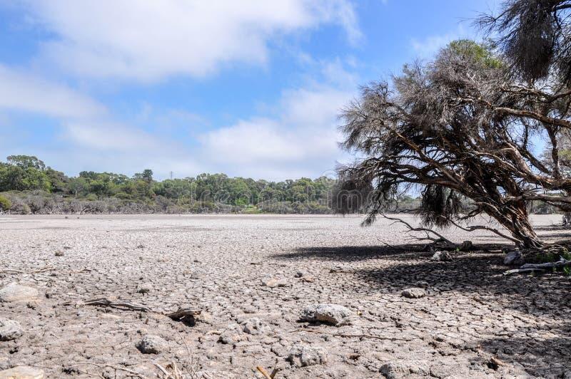Sequía en Manning Lake fotos de archivo libres de regalías