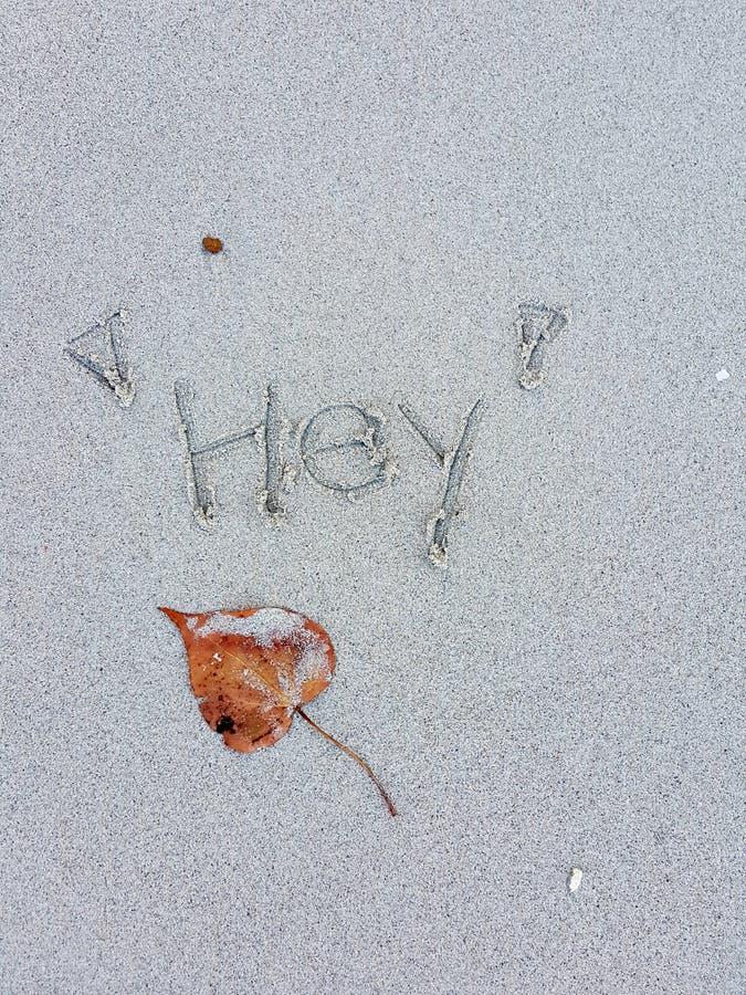 Seque as folhas e ` escrito à mão do ` Hey na praia da areia fotografia de stock royalty free