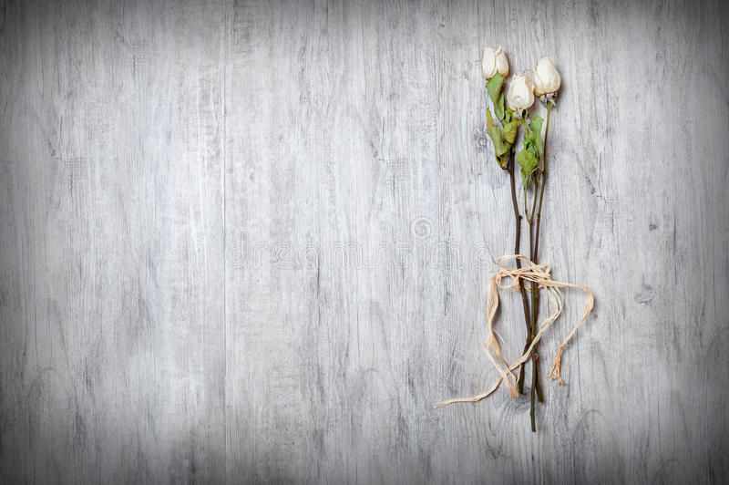 Seque as rosas brancas amarradas em sua haste no primeiro plano na tabela imagens de stock royalty free