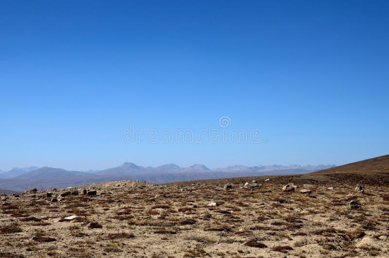 Seque la hierba y los arbustos quemados en el paisaje Skardu Paquistán de los llanos de Deosai imagenes de archivo