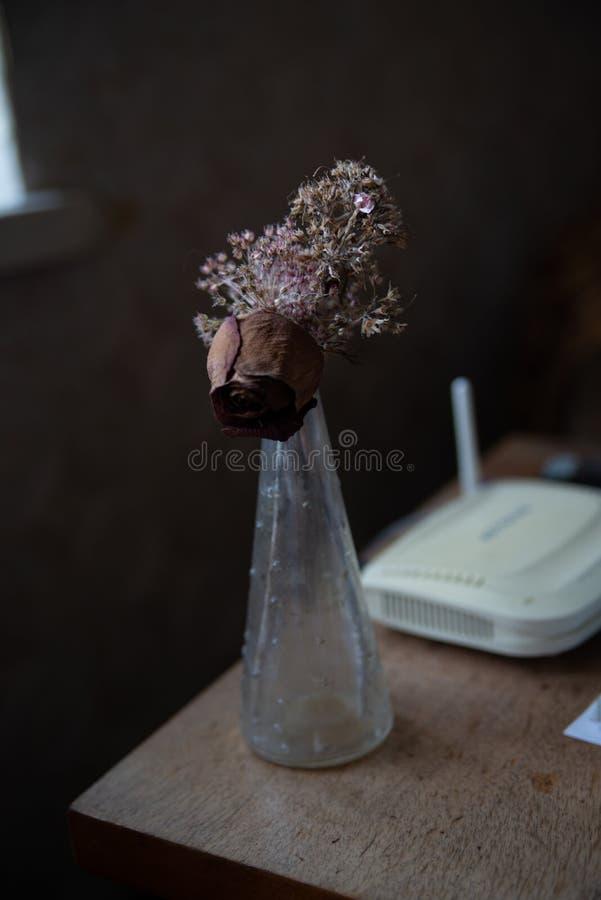 seque las flores en un florero fotografía de archivo