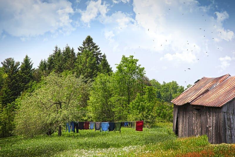 Sequedad del lavadero en cuerda para tender la ropa en un día de verano imagen de archivo