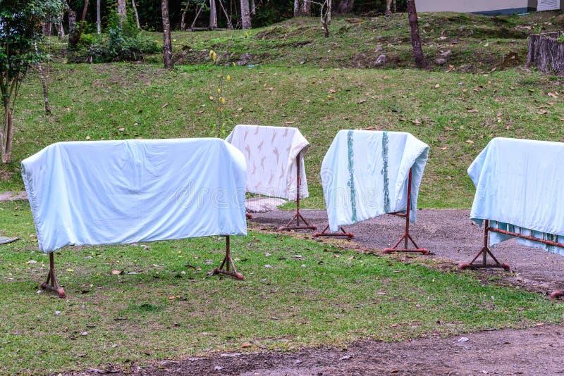 Sequedad del lavadero en un jardín en un día de verano soleado imagen de archivo