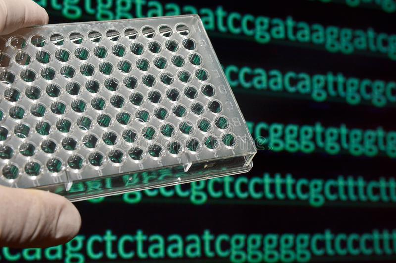 Sequencing the genome. royalty free stock images