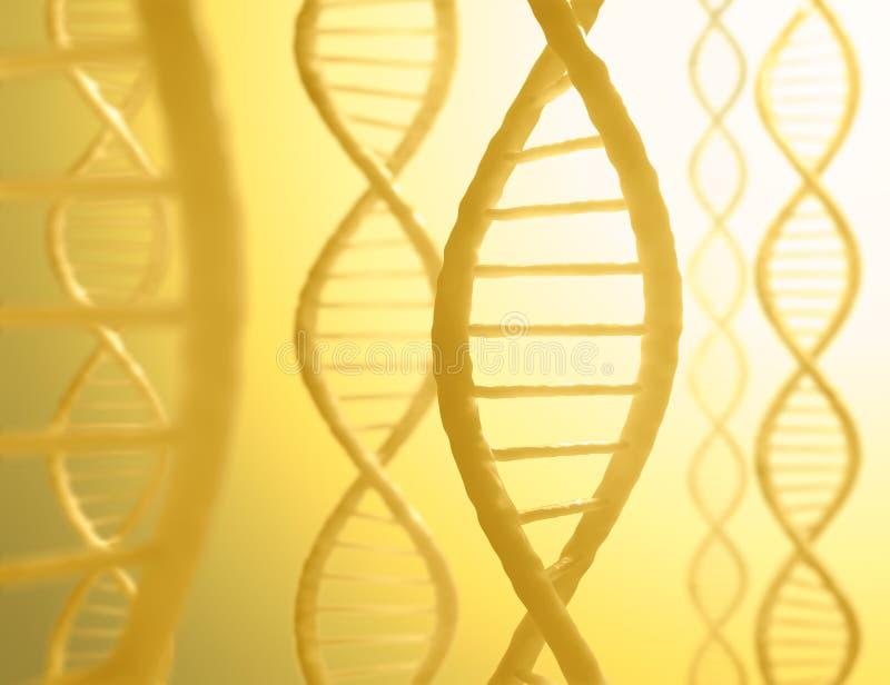 Sequenza del DNA fotografie stock libere da diritti