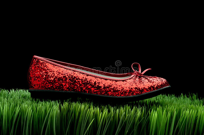 Download Sequined Red Slipper On Grass Stock Image - Image: 13167003
