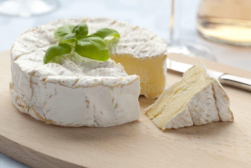 ser świeży camembert obraz royalty free
