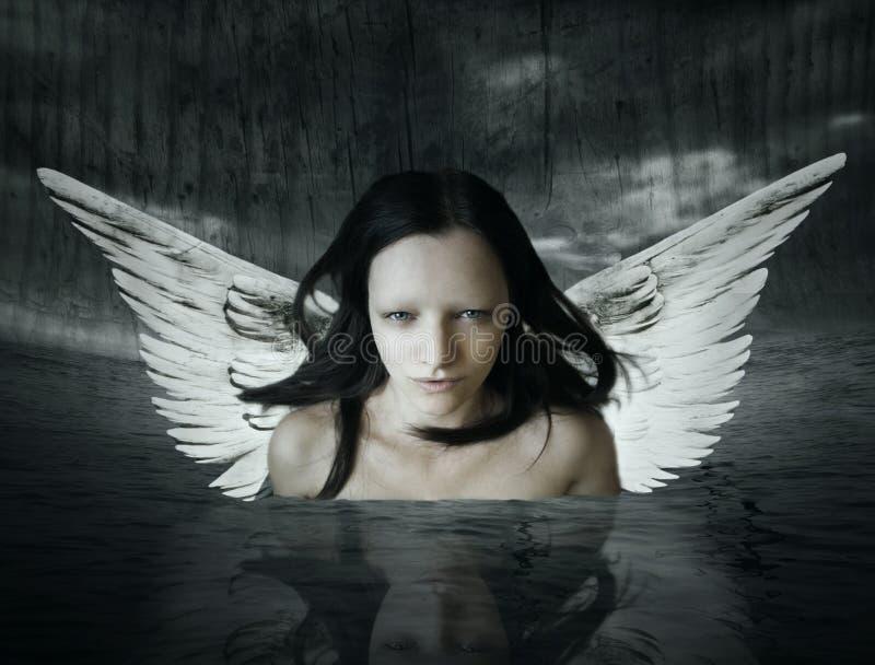 Ser angélico imagens de stock royalty free