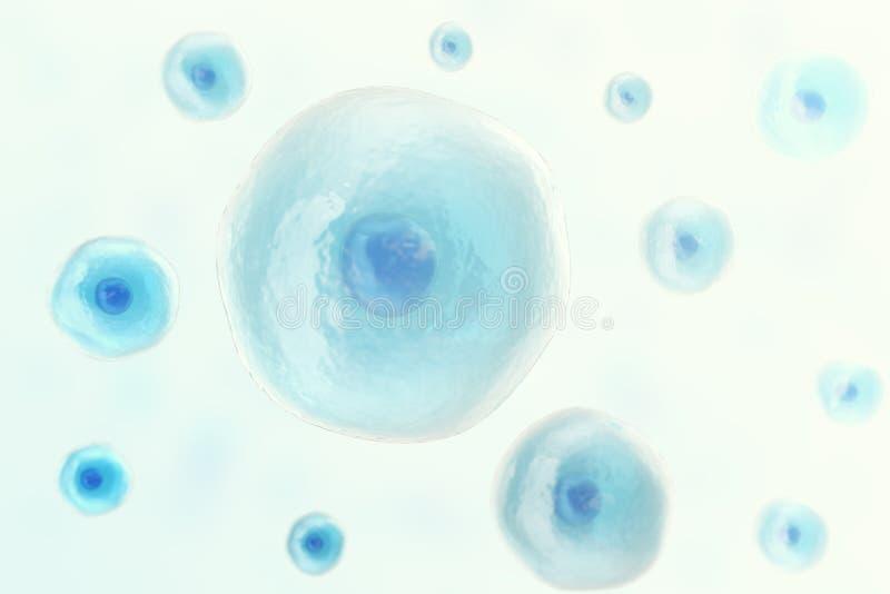 Ser humano azul da pilha no centro, fundo científico da medicina ilustração 3D fotografia de stock