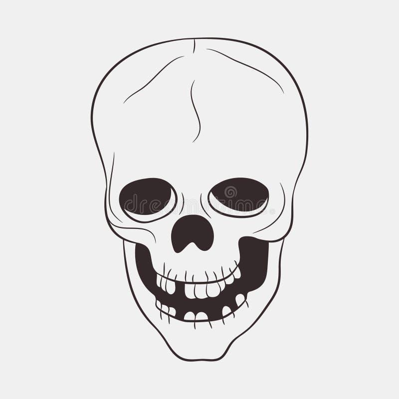 Ser humano del cráneo con un maxilar inferior y los dientes Vector drenado mano libre illustration