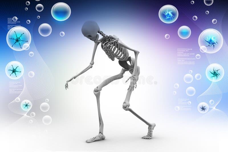 Ser humano Skelton stock de ilustración