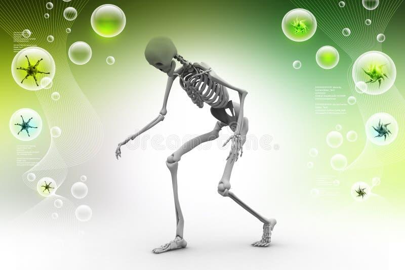 Ser humano Skelton ilustración del vector