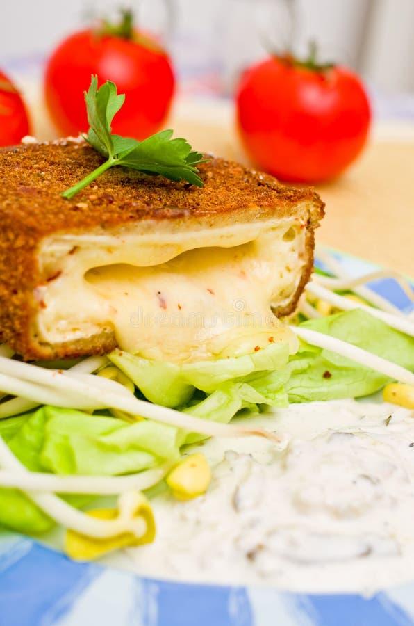 ser smażący kumberland Tatar zdjęcia stock