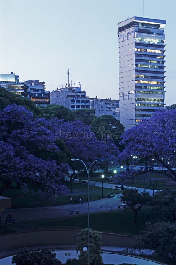 Sera a Buenos Aires immagini stock libere da diritti