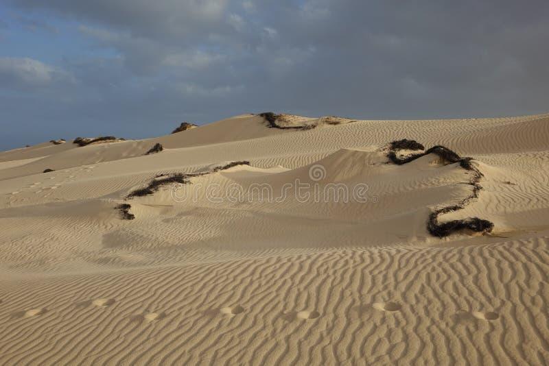 sera, con i modelli della sabbia e le strutture nel parco naturale, Corralejo, Fuerteventura, isole Canarie, Spagna fotografie stock