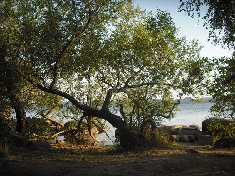 Sera di autunno sulla riva del lago immagine stock