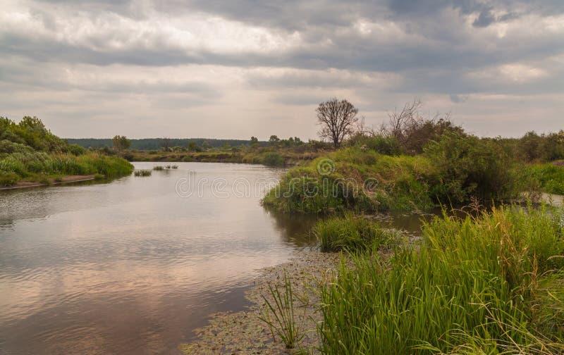 Sera nuvolosa di estate sul fiume immagini stock