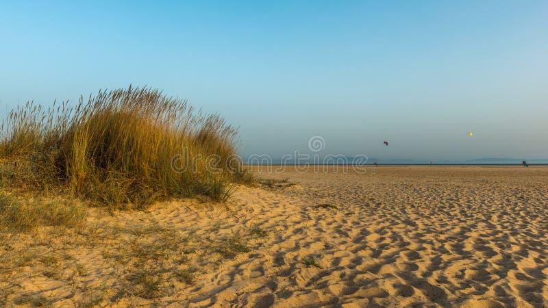 Sera pacifica nelle dune di sabbia della spiaggia fotografia stock