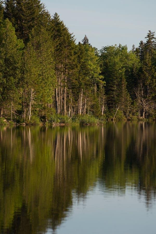 Sera sul lago fotografie stock