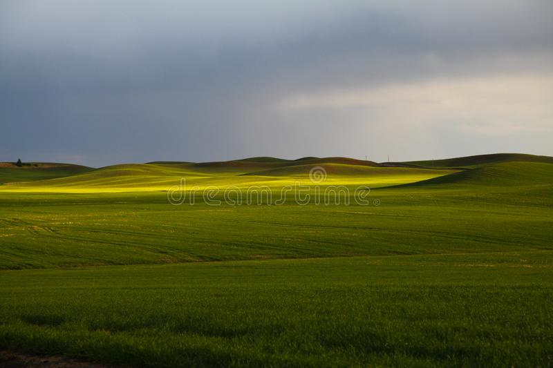 Sera sul Palouse a Washington orientale fotografia stock