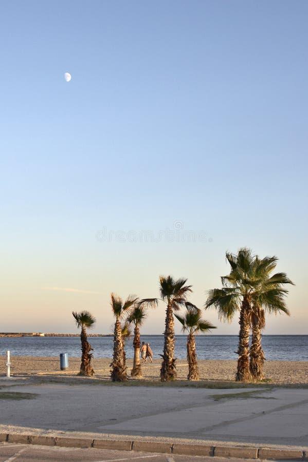 Sera sul quay Santa Pola immagini stock