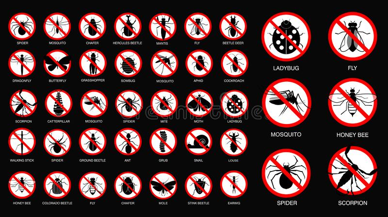 Set of various insect prohibited in silhouette, with insect name. royalty free stock image