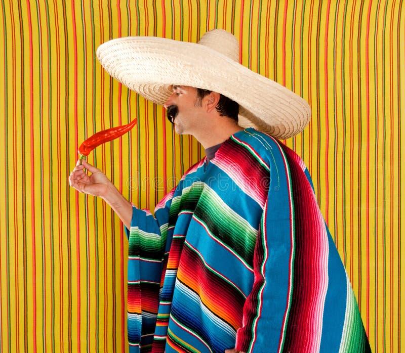 Serape típico del poncho del hombre mexicano de la pimienta caliente del chile fotografía de archivo