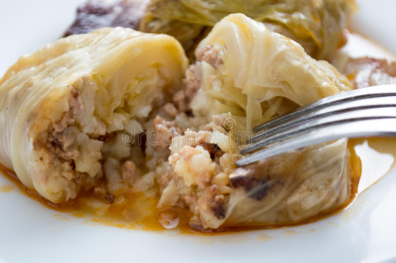 Serbian dish sarma served in white plate royalty free stock images