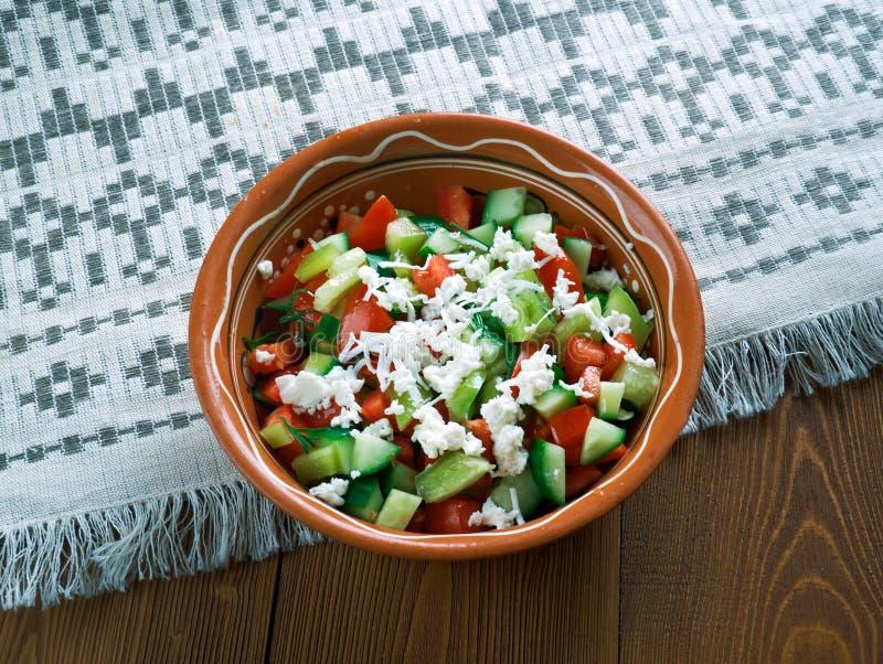 Serbian Salad stock image