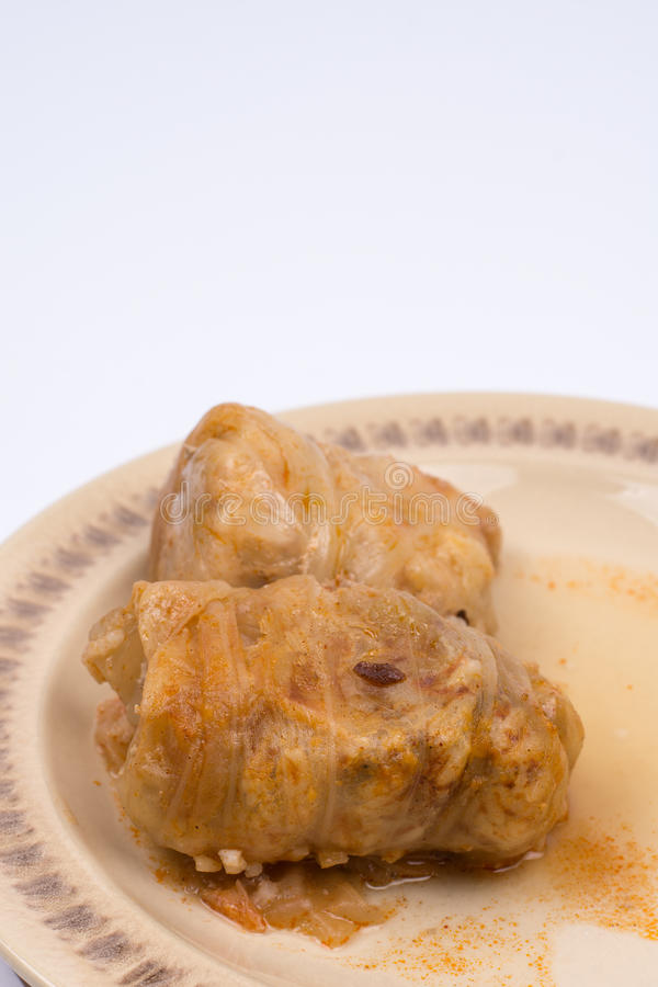 Serbian sarma served on the plate royalty free stock photography